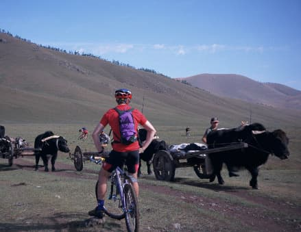 Khangai Mountain Bike Tour